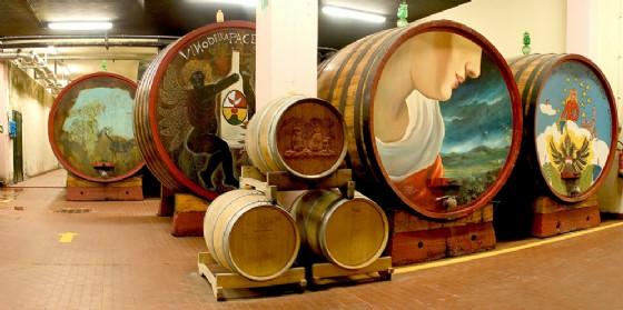 """Rinascita del """"Vino della Pace"""" nei vitigni della Vigna del Mondo di Cormòns (© Cantina Produttori Cormons)"""
