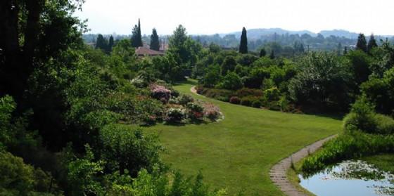 Gorizia Magica: la mostra si 'duplica' nel giardino Viatori con mille suggestioni legate alla magia delle piante (© Gorizia Magica)