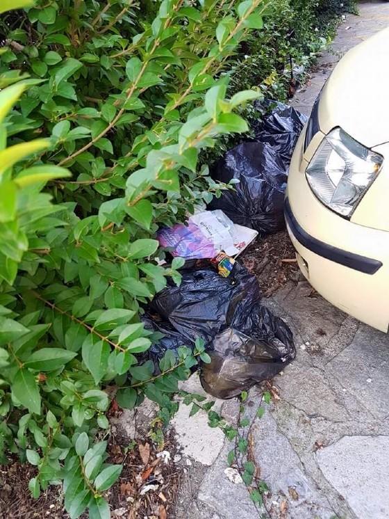 La zona è piena di sacchetti della spazzatura