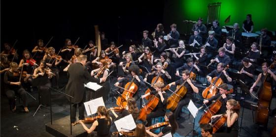 L'Orchestra Sinfonica Nova Filharmonija terrà un concerto a Sacile (© Nova Filharmonija)