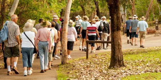 Camminamenti: al via i percorsi per l'invecchiamento attivo (© AdobeStock | Alextype)