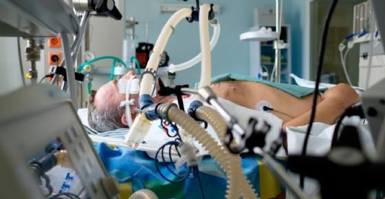 Legionella, morto dopo trapianto di reni al Sant'Orsola di Bologna