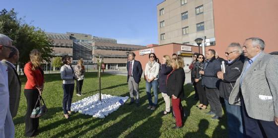 Sara Vito (Assessore regionale Ambiente ed Energia) interviene alla cerimonia di piantumazione di un albero a ricordo delle vittime dell'amianto