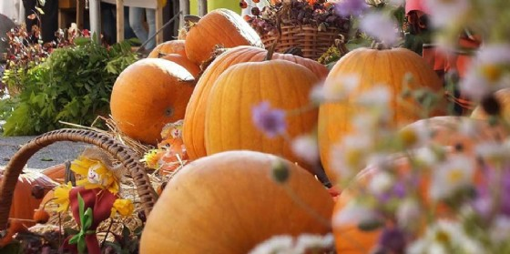 Gli eventi in programma domenica 8 ottobre (© Magia delle Mani e Festa delle Zucche Cividale | Facebook)