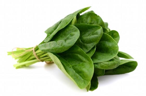 Non c'è Mandragora negli spinaci Bonduelle