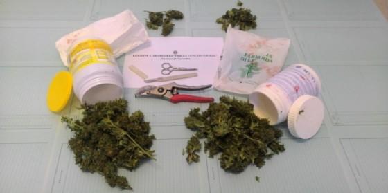 Coltivava marijuana nel campo (altrui). Beccato ha opposto resistenza ai carabinieri: arrestato