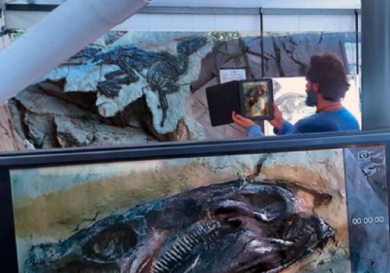 Il sito paleontologico del Villaggio del Pescatore (© Cooperativa Gemina)