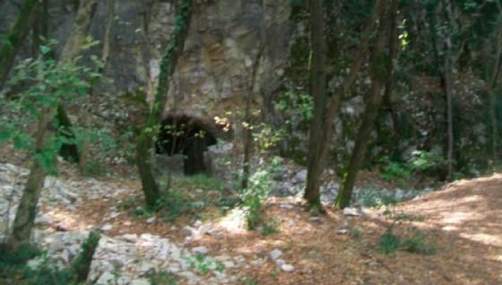 Tornano le visite guidate (© Il bunker di Opicina)