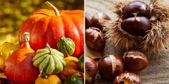 Gli eventi in programma sabato 14 ottobre (© Shutterstock.com)