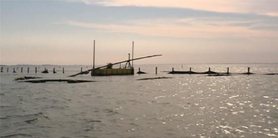 Scontro tra due imbarcazioni a Porto Nogaro: muore un 55enne di Cervignano (© Regione Friuli Venezia Giulia)