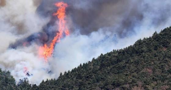 Incendi in Piemonte, trovati degli inneschi nel Pinerolese: «La prova che molti sono dolosi» (© ANSA)