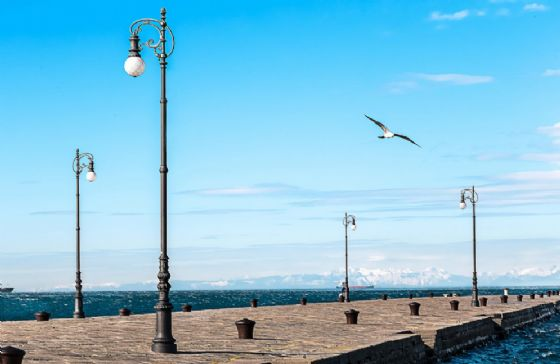 Trieste, ecco cosa fare venerdì 24 novembre
