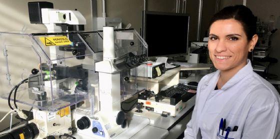 Terapie cellulari, al Cro borsa di studio per la ricerca internazionale
