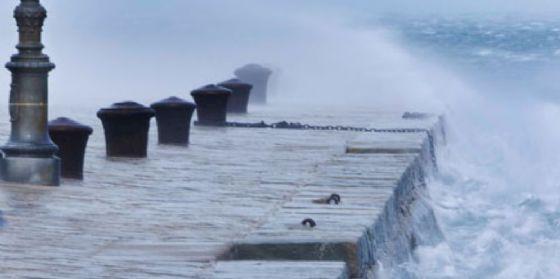 Bora oltre i 110 chilometri orari su Trieste e meno 7 gradi in Carnia (© Diario di Trieste)