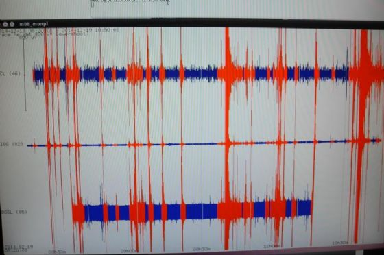 Una scossa di terremoto di magnitudo 4.0 è stata registrata a 00:34 del 4 dicembre vicino Amatrice