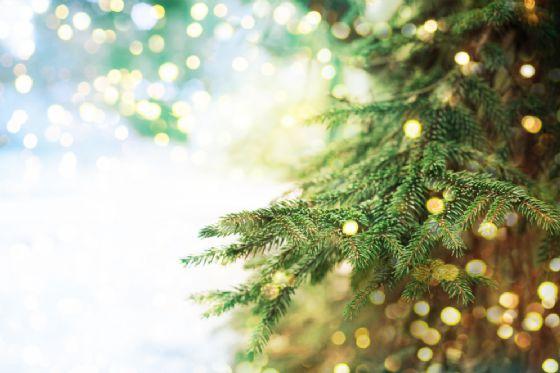 Canavese, 9 cose da fare dal 4 al 10 dicembre (© Shutterstock.com)