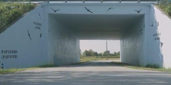 Inaugurato il murales nel sottopasso dell'autostrada A28 a Villotta di Chions (© Autovie Venete)