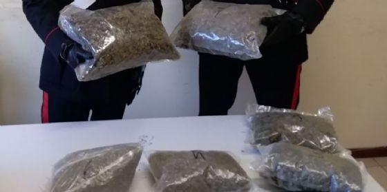 Sequestrati 42 chili di marijuana: due albanesi e tre italiani arrestati