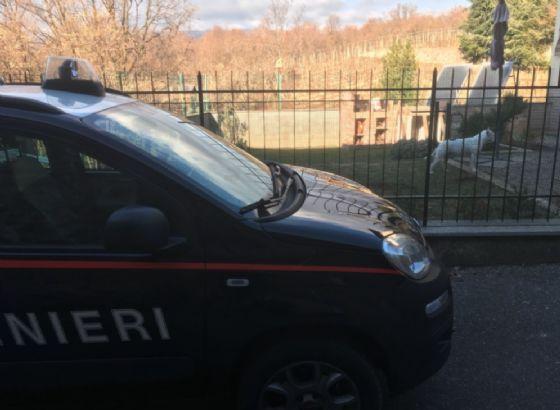 Oggi i carabinieri sono tornati dalla proprietaria dei cani