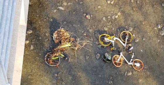 Le bici in fondo alla Dora