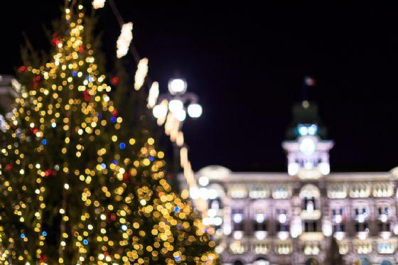 Trieste, ecco cosa fare venerdì 29 dicembre (© Shutterstock.com)