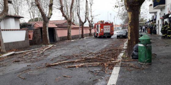 Intervento dei Vigili del Fuoco per mettere in sicurezza le strade romane