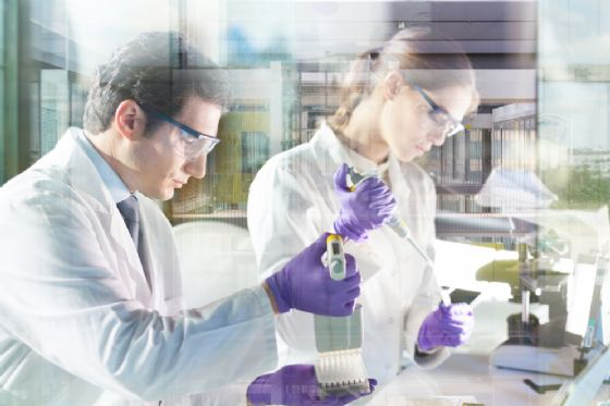 Alzheimer e Parkinson. Pfizer Inc. non investirà nella ricerca di nuovi farmaci