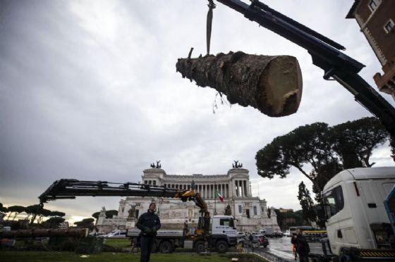 """Un momento della rimozione dell'albero di Natale """"Spelacchio"""" a piazza Venezia, Roma, 12 gennaio 2018. ANSA/ANGELO CARCONI (ANSA)"""