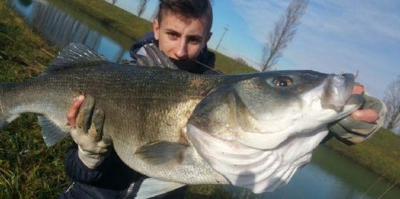 Va a pesca col padre: 16enne prende all'amo un branzino da 11 chilogrammi e 8 etti