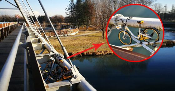 Le bici gettate dal ponte