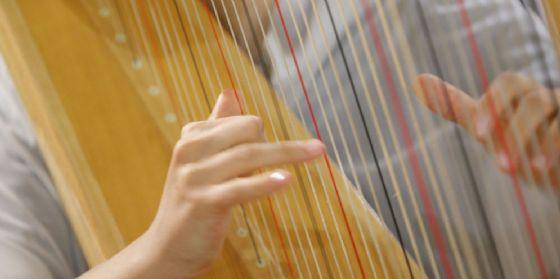Riparte Musicainsieme, ormai giunta alla 41^ edizione