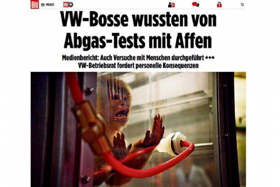 Germania: cavie umane per i test sui gas di scarico delle auto