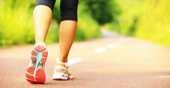 Secondo gli esperti uno dei metodi migliori per perdere peso e preservare la salute è fare una bella passeggiata