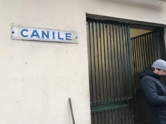 L'ingresso del canile di via Germagnano