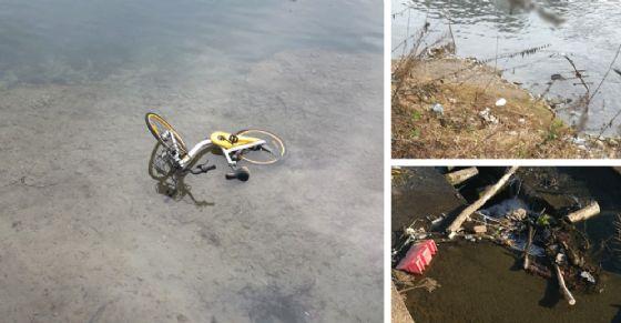 La sporcizia che soffoca il fiume Po (© Silvio Magliano)