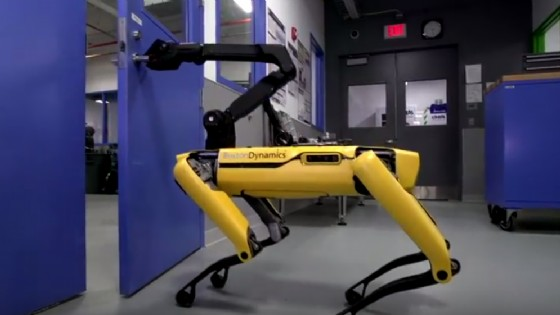 Il cane-robot