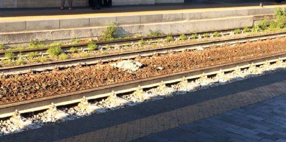 Donna muore gettandosi sotto un treno a Pordenone (© Diario di Pn)