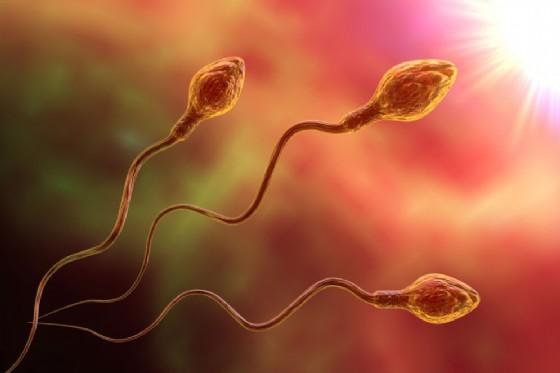 Infertilità maschile, per 6 uomini su 10 è colpa dell'inquinamento. Allarme sesso