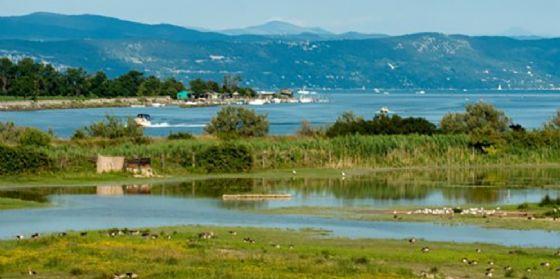 Non ci saranno ulteriori divieti nelle aree protette dell'Isola della Cona