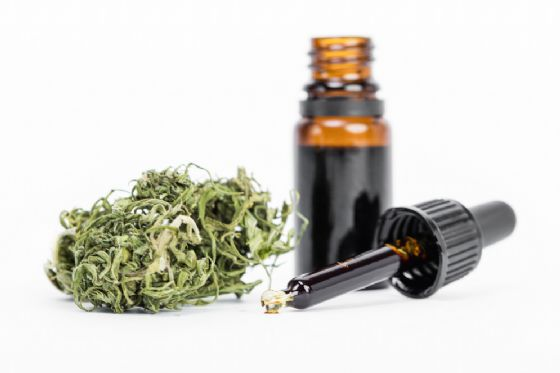 52enne sconfigge il cancro con la Cannabis
