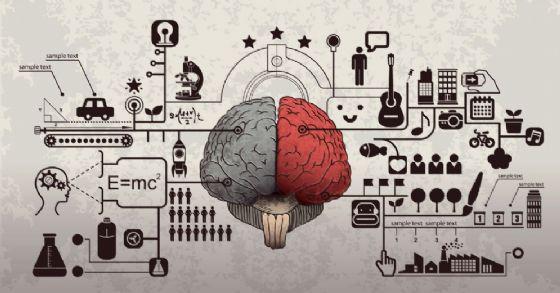 Cosa sappiamo di Nectcome, la startup che vuole congelare il nostro cervello