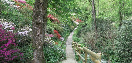 Gorizia, riapre al pubblico la splendida area verde del Giardino Viatori