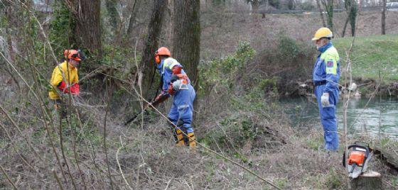 Noncello, proseguono i lavori di pulizia e riqualificazione ambientale