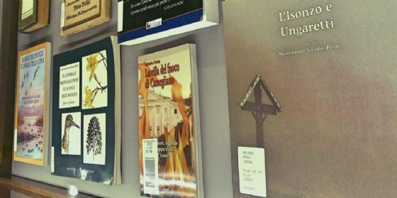 Il fiume Isonzo in mostra in un viaggio tra immagini e parole