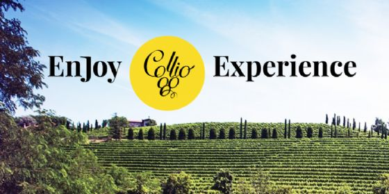Collio.it: presto online il nuovo portale del Consorzio di Tutela Vini Collio