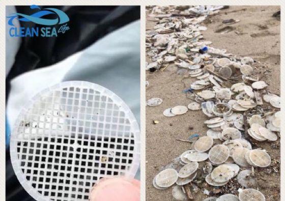 Risolto il mistero dei dischetti nel mar Tirreno