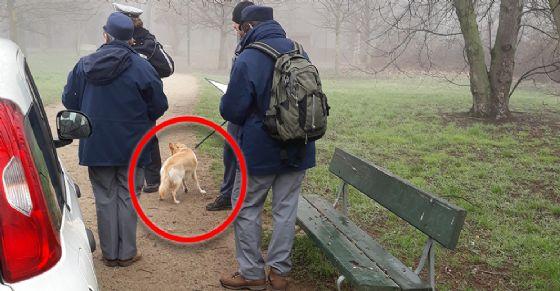 Controlli sulla conduzione dei cani al parco Colonnetti e i giardini Maiocco (© Polizia Municipale di Torino)