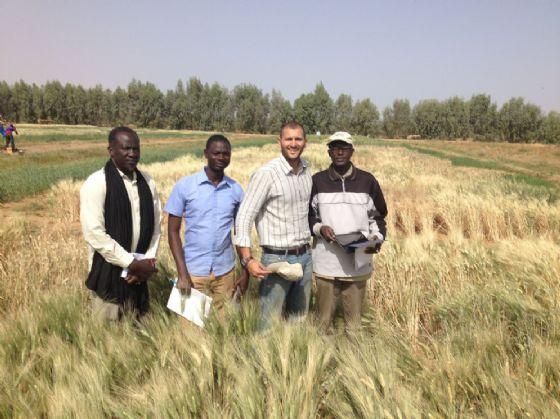 Il grano di Filippo che cresce nella Savana e sfama milioni di persone