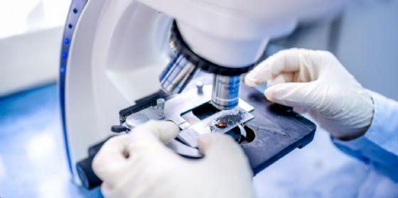 """""""Monitoraggio Biologico Umano"""": completato lo studio pilota sui residenti a Servola e a Monfalcone (© Shutterstock.com)"""