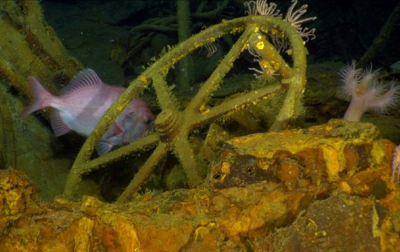 Part of the wreckage of the wreckage of Australia's first submarine HMAS AE1